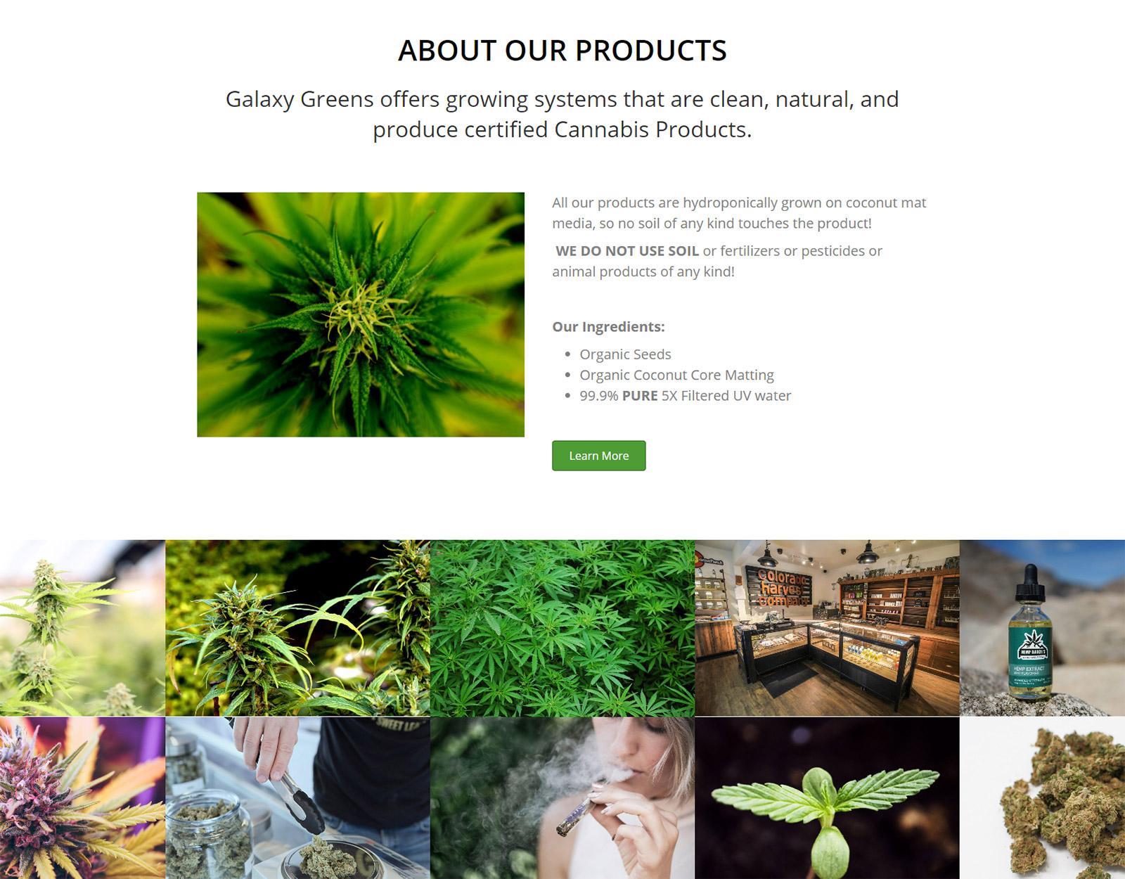 screencapture-greens-madebyscott-2019-03-09-08_27_13